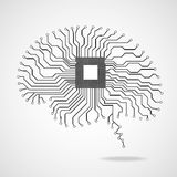 Brain. Cpu. Circuit board. Vector illustration Eps 10 Royalty Free Stock Images