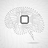 Brain. Cpu. Circuit board Royalty Free Stock Photo