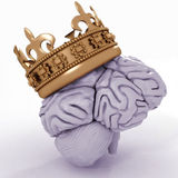 Brain with crown Royalty Free Stock Images
