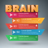 Brain 3d business infographics. Royalty Free Stock Photography