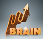 Brain 3d business infographics. Royalty Free Stock Images