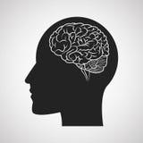 Brain design. organ icon. Flat illustration,  graphic Royalty Free Stock Photo
