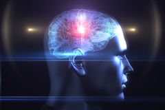 Brain diagram in human head Royalty Free Stock Image