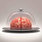 Brain Dome Royalty Free Stock Photo