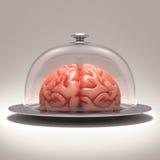 Brain Dome Royalty Free Stock Photo