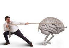Brain drain. Man pulls the rope with brain drain Royalty Free Stock Image