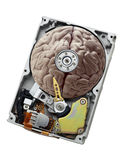 Brain Drive Royalty Free Stock Images
