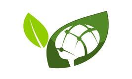 Brain Ecology Logo Design Template ilustração stock