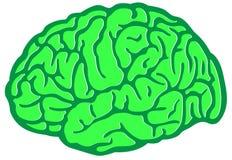 Brain Environment verde Foto de archivo libre de regalías