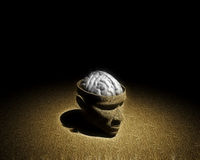 Brain exposed in top of head Royalty Free Stock Photos