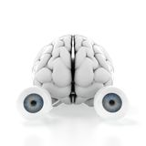 Brain with eyes Stock Images