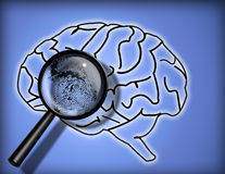 Brain Finger print. Brain with magnify glass Personality - Brain Fingerprint - Identity Stock Photography
