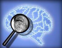 Brain Fingerprint - Identity - Psychoanalysis. Magnify glass reveals fingerprint in brain illustration Stock Photography
