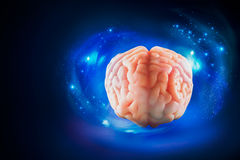 Brain floating on  a blue background / thoughts concept Stock Photos