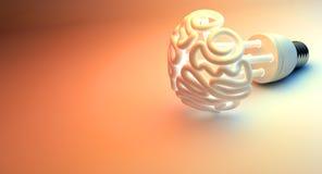 Brain Flourescent Light Bulb Imagen de archivo libre de regalías