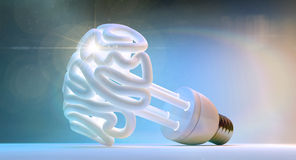Brain Flourescent Light Bulb. An illuminated fluorescent light bulb in the shape of a stylized brain on an isolated colorful studio background Stock Images