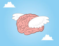 Brain Flying Stock Images