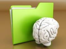 Brain Folder Fotos de Stock Royalty Free