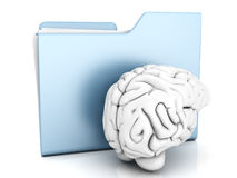 Brain Folder. Brain and a Folder. 3D illustration Royalty Free Stock Photography