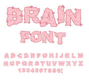 Brain font. Letters from Central department human nervous system stock illustration