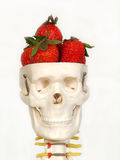 Brain Food Stock Image
