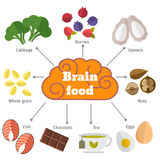 Brain food vector flat infographics Stock Images