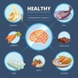 Brain food vector infographics Stock Photo