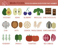 Brain foods focus on adding good foods that augment Royalty Free Stock Photos