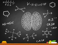 Brain and formulas Royalty Free Stock Photos