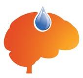 Brain Fuel Stock Photo