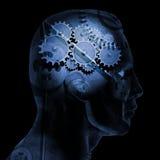 Brain Gears Royalty Free Stock Photography