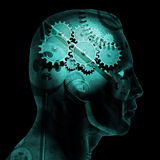 Brain Gears Stock Image