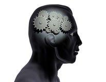 Brain Gears Royalty Free Stock Image