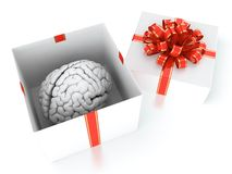 Brain gift Royalty Free Stock Photos