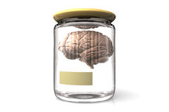 Brain in a glass pot Stock Images