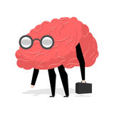 Brain glasses. Smart professional. Very cute manager. Egghead wi Stock Image