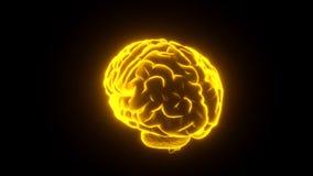 Brain Glowing yellow loop stock video
