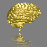 Brain - gold Stock Images