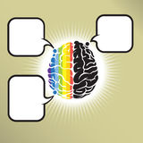 Brain gomo Stock Images
