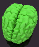 Brain Green. Green 3d human brain model Stock Image