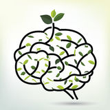 Brain with Green leaf. Black outline vector illustration. Royalty Free Stock Photography