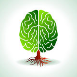 A brain growing in the shape of tree Stock Photo