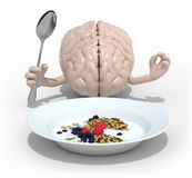 Brain with hands and fork in front of a cerealsi dish. Human brain with hands and fork in front of a cerealsi dish, 3d illustration Stock Photography