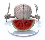 Brain with hands, fork and knife in front of a watermelon slice. Human brain with hands, fork and knife in front of a watermelon slice on dish, 3d illustration Royalty Free Stock Photo