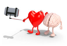 Brain and heart take a self portrait with her smart phone. Human brain and heart with arms and legs take a self portrait with her smart phone, 3d illustration Stock Photography