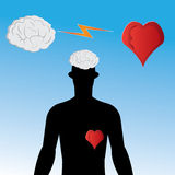 The brain or the heart. Vector illustration with the brain or the heart Royalty Free Stock Photos