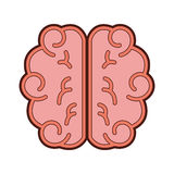 Brain human isolated icon Royalty Free Stock Photography