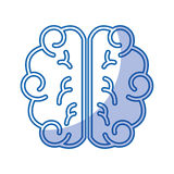 Brain human isolated icon Royalty Free Stock Photo