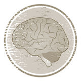 Brain icon Royalty Free Stock Photography