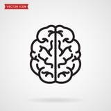 Brain Icon Immagine Stock
